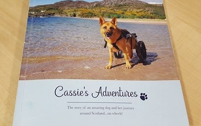 Read all about 'Cassie's Adventure's'